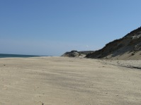 Ocean, beach and sand cliffs on Cape Cod.