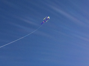 Our kite soared above Cape Cod beaches many times last year.