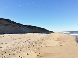 The Outer Cape's sand cliff-backed ocean coastline.