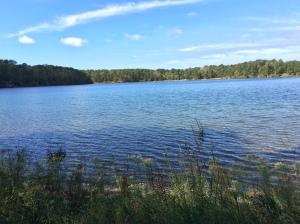 Flax Pond.